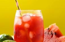4dadd538-cha-gelado-de-frutas-vermelhas_p_thumb